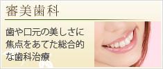 審美歯科 歯や口元の美しさに焦点をあてた総合的な歯科治療